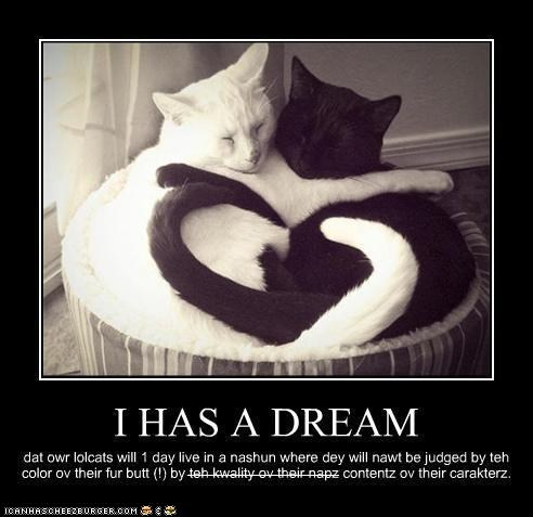 best of the week,black and white,caption,captioned,Cats,classics,Hall of Fame,I have a dream,love,martin luther king jr,martin luther king jr day,mlk day,race