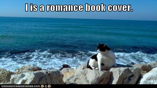 am,book,caption,captioned,cat,cover,I,posing,romance
