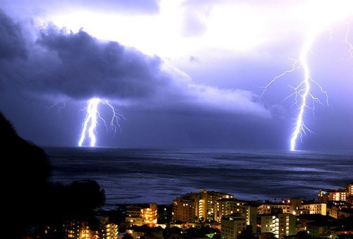 Anti-Bad-Forecast Bill dont-need-the-weatherman South Africa - 5701369600