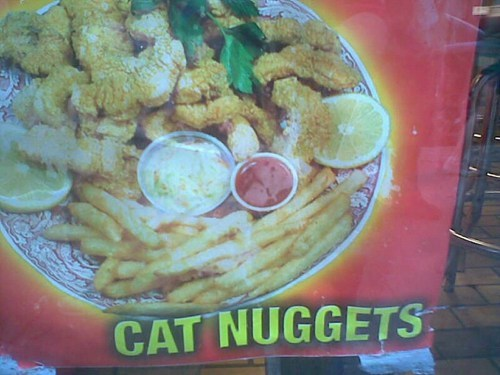 Appetizing,cat food,cat nuggets,mittens