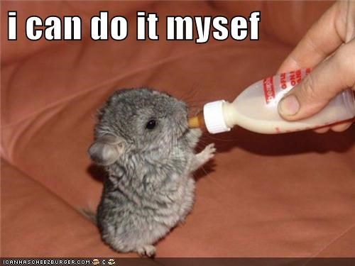 adorable,animals,baby animals,bottle,independent,mouse