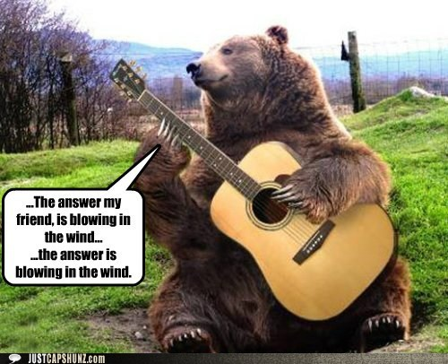 animals bear bear playing guitar blowing in the wind bob dylan caption contest folk music folk singer guitar photoshopped