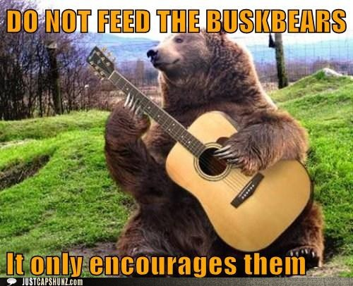 banimals bear bear playing guitar buskbears busker caption contest folk music folk singer guitar photoshopped