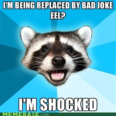 bad eel jokes Lame Pun Coon shocked - 5702196992