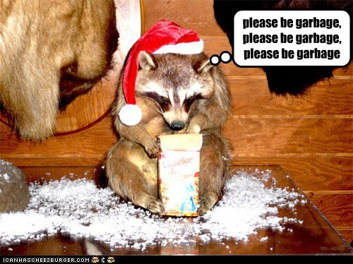 caption,captioned,do want,garbage,gift,hat,hoping,please,raccoon,santa