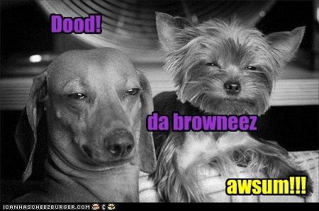 Dood! da browneez awsum!!!
