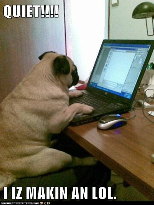 be quiet,best of the week,computer,Hall of Fame,laptop,making lols,pug,quiet