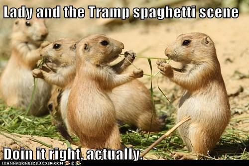 actually,caption,captioned,doing it right,lady and the tramp,prairie dog,Prairie Dogs,recreation,scene,spaghetti