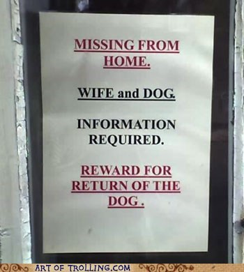 dogs IRL missing sign wife - 5703613184