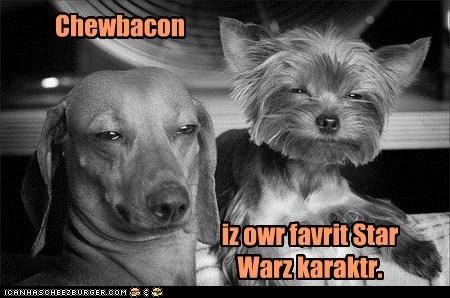 Chewbacon iz owr favrit Star Warz karaktr.