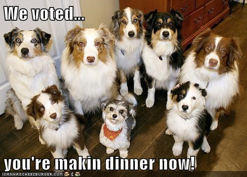 We voted... you're makin dinner now!