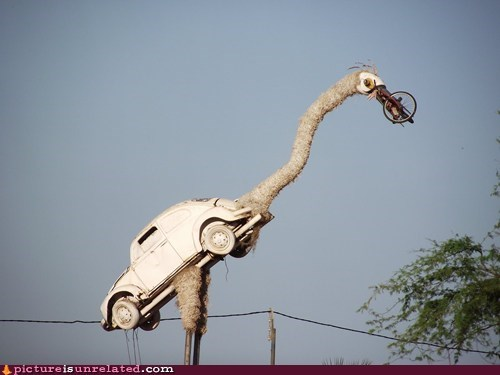 big bird ostrich Sesame Street wtf - 5705078272
