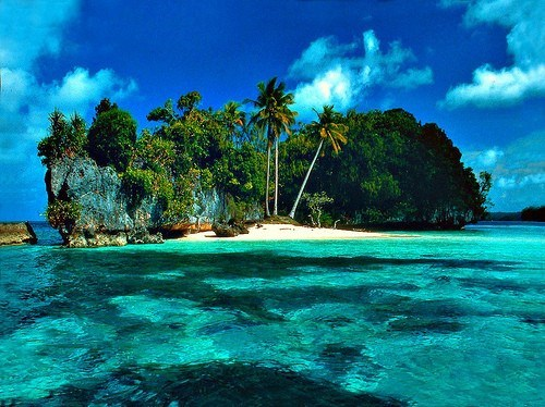 getaways island ocean palm trees Tropical tropics unknown location water
