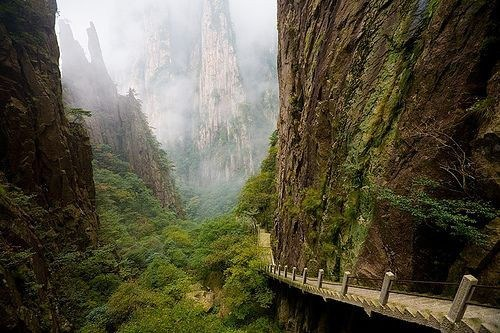 fog Forest getaways mist stairs stairway to heaven trees unknown location - 5705378304