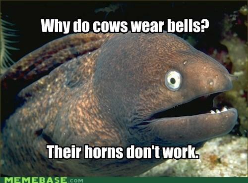bad,bells,cows,eels,horn,Memes