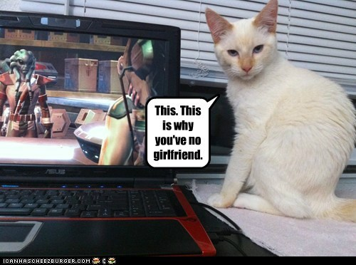 caption captioned cat girlfriend no reason star wars the old republic this video game why - 5706249216
