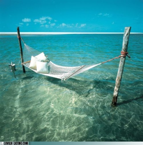 best of the week hammock ocean relaxation Tropical - 5706423552