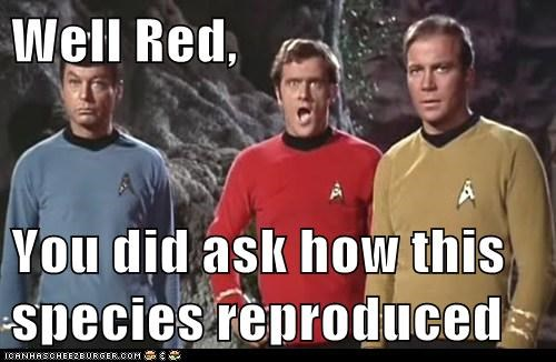 ask,Captain Kirk,DeForest Kelley,horror,McCoy,redshirt,reproducing,Shatnerday,Star Trek,William Shatner