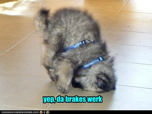 maybe a liddul too good yep, da brakes werk
