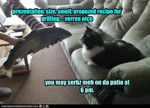 ah apprubz prezentation, size, smell, propozed recipe for grilling... verree nice you may serbz meh on da patio at 6 pm.