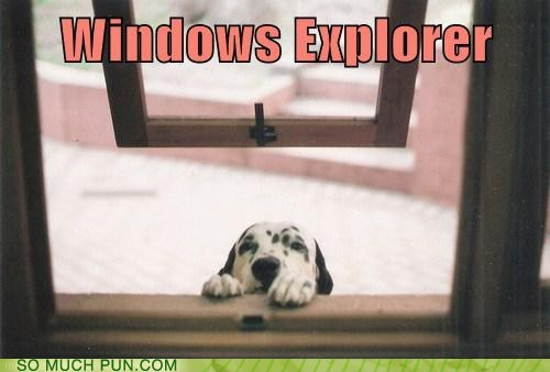 browser,dogs,double meaning,explorer,Hall of Fame,internet,literalism,puppy,windows