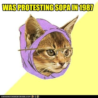 before,Cats,Hipster Kitty,hipsters,internet,laws,news,SOPA