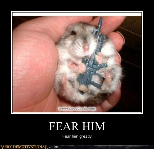 cute fear gun hamster hilarious - 5708353536
