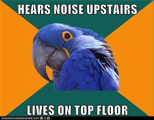 birds,noises,paranoid,Paranoid Parrot,parrots,roof,scared