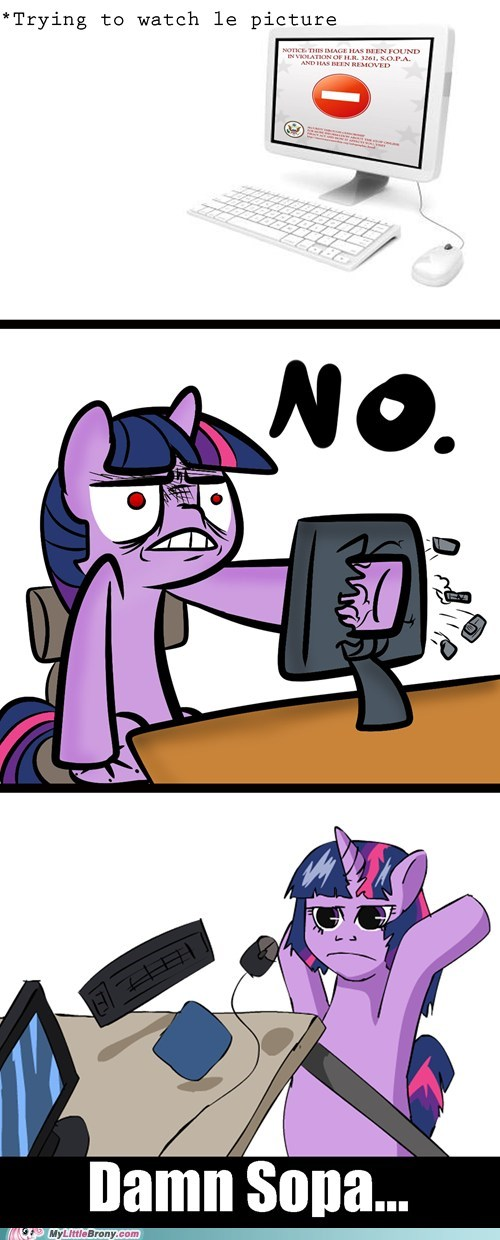 meme PIPA SOPA the internets twilight sparkle - 5709466112