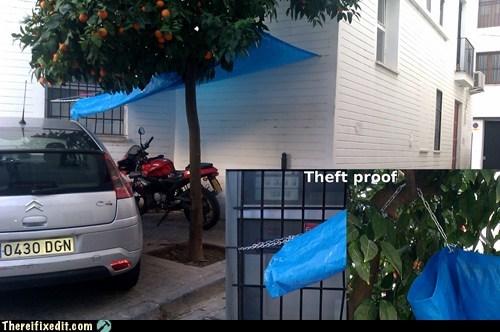 cars dual use tarp