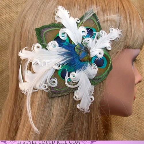 cool accessories hair peacocks
