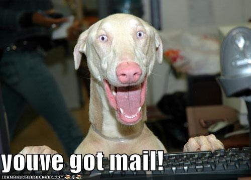 Youve Got Mail Cheezburger Funny Memes Funny Pictures