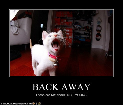 BACK AWAY These are MY shoez, NOT YOURS!