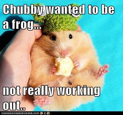 Chubby wanted to be a frog...  not really working out..