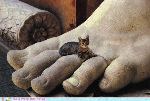 acting like animals cat explanation foot giant statue story - 5711629312