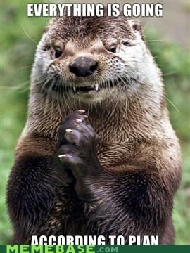evil,Memes,otter,plans