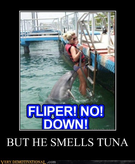 BUT HE SMELLS TUNA