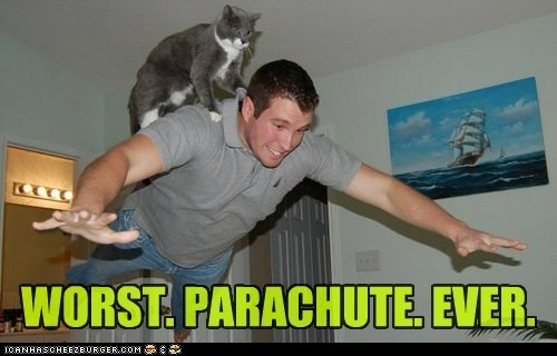 caption captioned cat ever human lolwut parachute worst - 5712530944