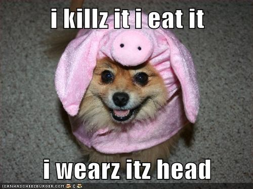 i killz it i eat it i wearz itz head