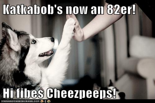 Cheezburger Image 5713866496