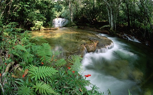 brazil Forest getaways river south america Tropical wallpaper wallpaper of the day water waterfall - 5714131200