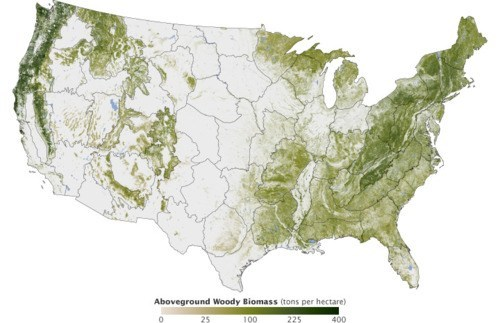 infographic,National Biomass and Carb,National Forest Map,Woods Hole Research Cente