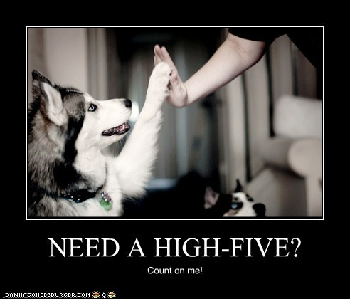 NEED A HIGH-FIVE? Count on me!
