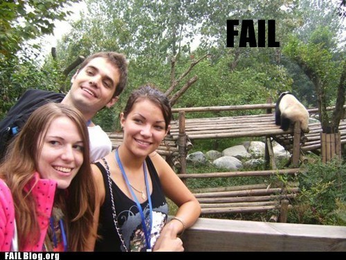 background,photobomb,wtf,zoo