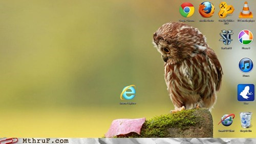 browsers Hall of Fame internet explorer perplexed owl