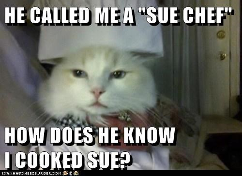 caption captioned cat chef cooked hat knowledge pun sue sue chef surprised suspicious - 5715934464