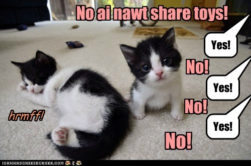 No ai nawt share toys! Yes! Yes! Yes! No! No! No! hrmff!