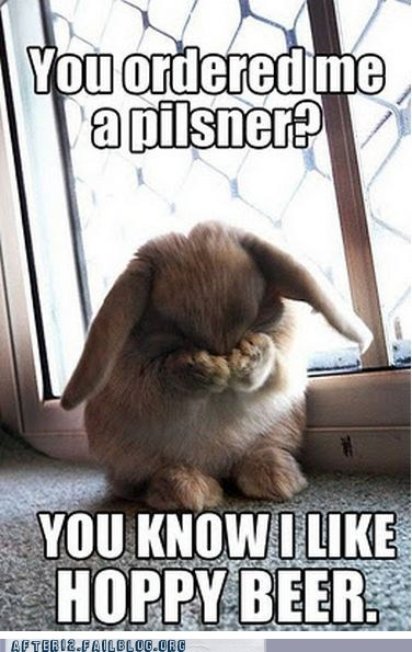 beer,bunnies,crunk critters,get it,pilsner,pun,rabbits
