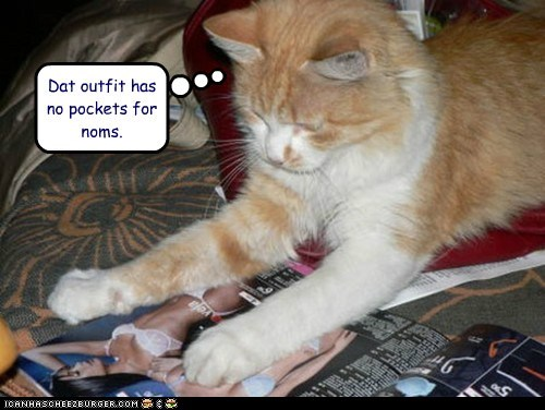 caption,captioned,cat,does not,have,lack,magazine,noms,observation,outfit,pockets,that