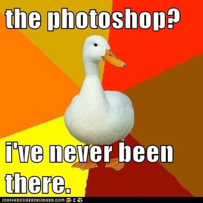 birds,ducks,dumb,photoshop,shops,software,stores,Technologically Impaired Duck,technology